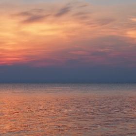 Вечерни морски цветове