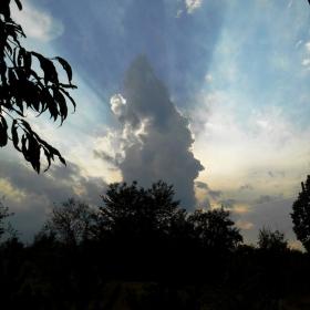 Вертикалният облак
