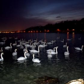 Вечер на брега