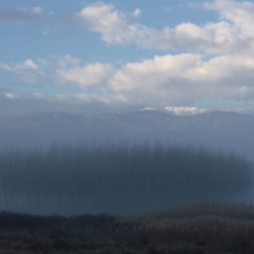 Омагьосаната гора