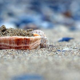 шепа пясък