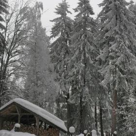 Зимен Боровец... Здрава зима, срещу здрава подготовка...