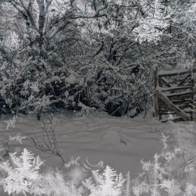 Снежна приказка без думи...