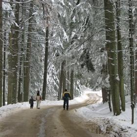 Зимен Боровец... Мечтана разходка...