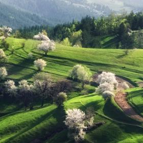 пролет по родопски
