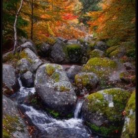 Да си спомним за есента :)