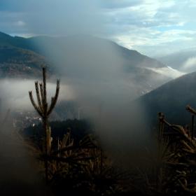 Да уловиш мъглата