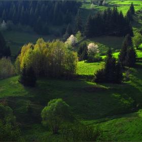 Тучни поляни, от слънцето погалени