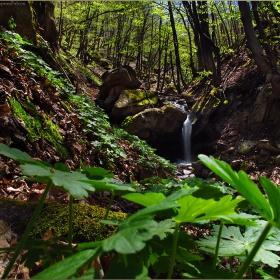Изворът на един от притоците на Марица високо в Родопите