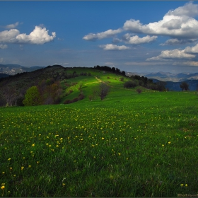Ранна пролет високо в Родопите