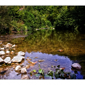 Край река Велека