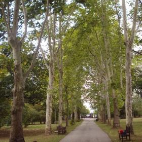 Входната алея на парка Врана