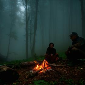 Страшно е в гората нощем