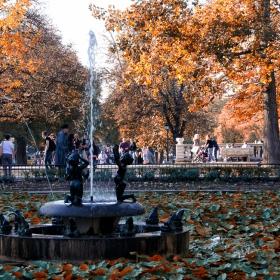 Весели есенни кестени блеснали...