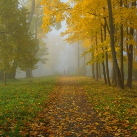 Осенние прогулки...