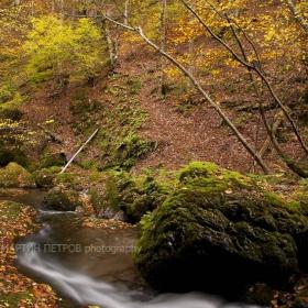 Резерват Стенето през есента