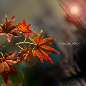 есенно ...