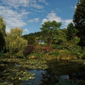 Езерото с върбите и къщата на Клод Моне