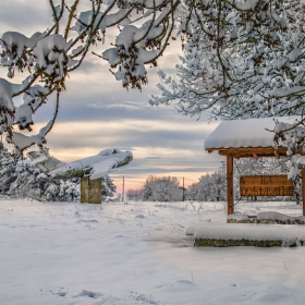 Красив студ