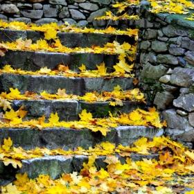 Златната Есен