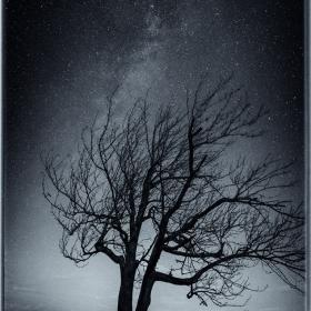 Есенно, звездно, някъде из полята