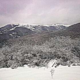 Привет от снежния Балкан!