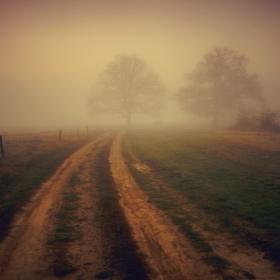 Пътуване в мъглата