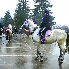 ТОДОРОВДЕН -  Конкурс за най-гиздав кон