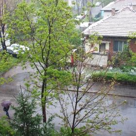 В София зимата се завърна :)