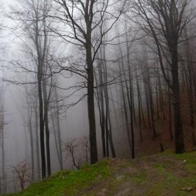 мъглата настъпва