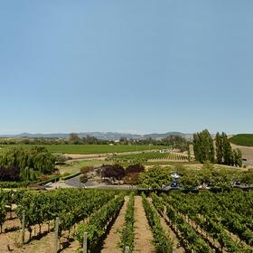 Долината Напа, Калифорния известен производител на вина.