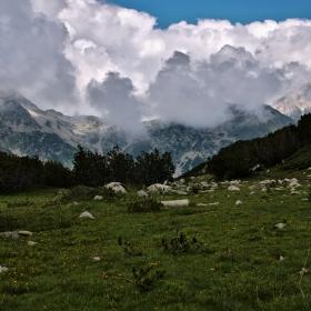 От любимата планина