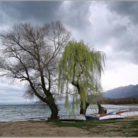 Край Охридското езеро