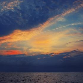 Цветовете на утрото