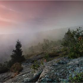 Утро в Средната земя