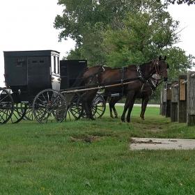 Из земите на амишите (3)