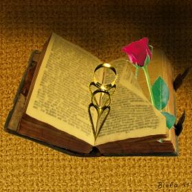 Книга за любовта-стара и нова, а и още нещо.