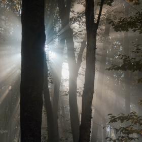 Витошки есенни лъчи