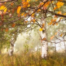 Октомври се оплете в разхвърляните мисли