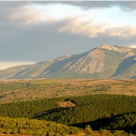 Връх Виден - Конявска планина