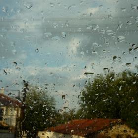 дъждец
