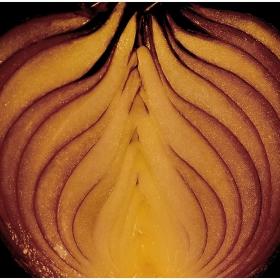 Onions in a framework