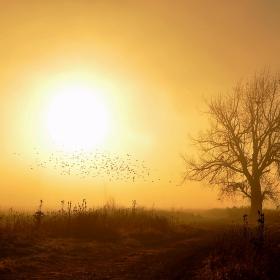 Есенна импресия 2