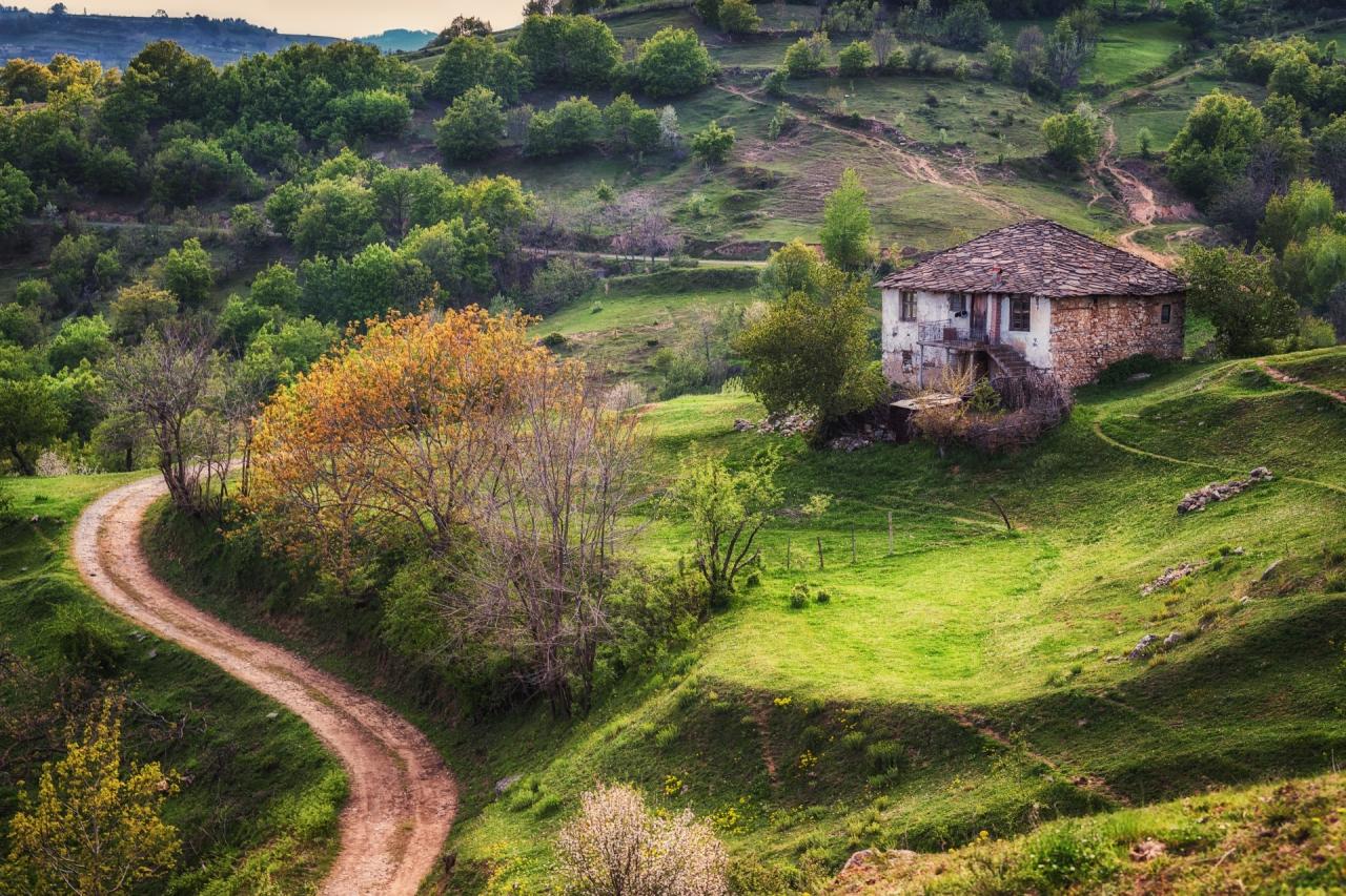 Селски път, къща и едно невероятно приключение