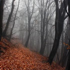 Есента си отива...