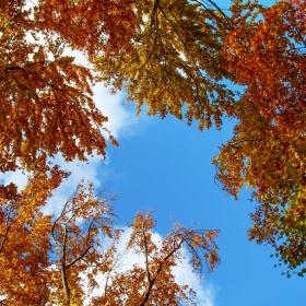 есенно настроение 2 ...