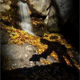 фотографът на есента