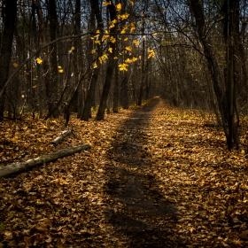 Есента си отива