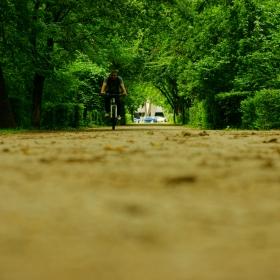 Самотния колоездач