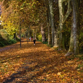 Обичайната есен в Бад Мюнстер ам Щайн